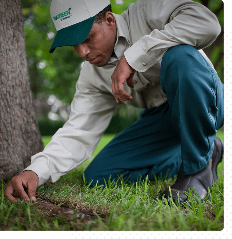 A Trugreen team member is taking a measurement in the grass.