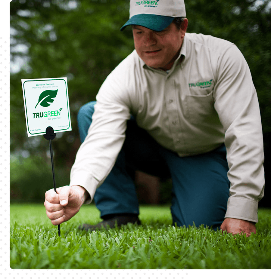 A Trugreen team member bends down to put a Trugreen sign in someone's yard.
