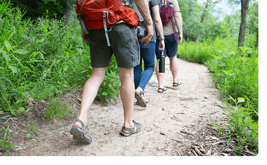 Three men walking outside on a hike.